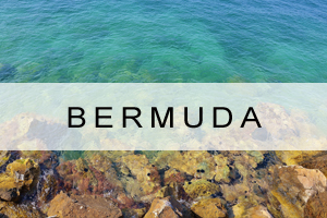 Link to Bermuda Offers