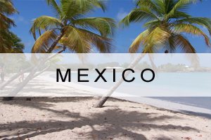 Link to Mexico Offers